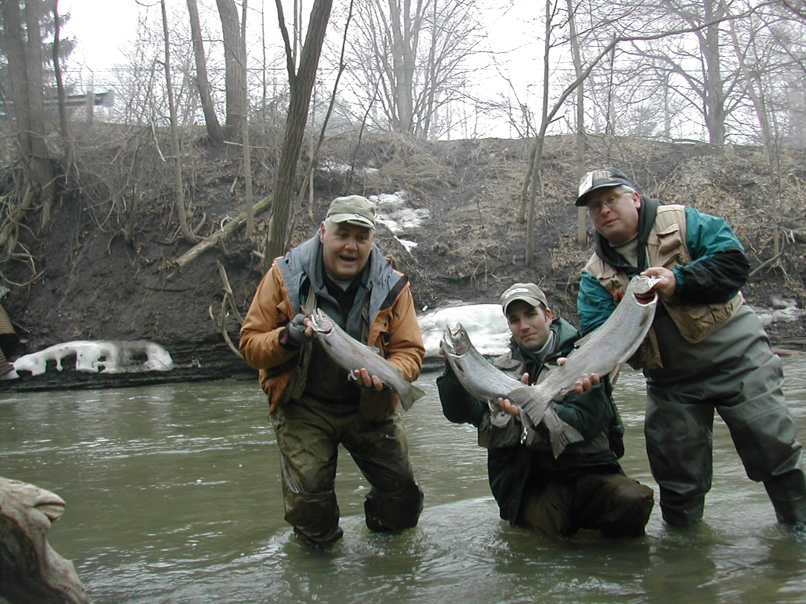 three-steelhead-catches